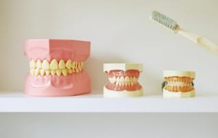 施術メニュー「自分の歯と変わらない輝きセラミック」のイメージ画像。歯並びの良い家族が写真を撮っている